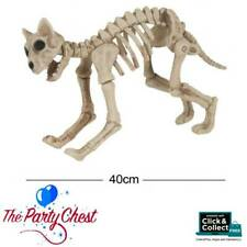 ZOMBIE CAT SKELETON HALLOWEEN PARTY DECORATION Horror Animal Pet Prop HI337
