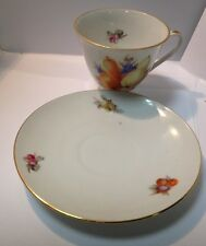 Vintage Germany Tea Cup and Saucer  Summer Fruit design Fancy Teacup Set