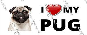 I love my Pug Bumper Sticker Cute Puppy Dog Sticker Decal Ute Car Camper Caravan