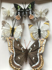 Realistic Style Feather Butterflies - Fake Authentic Butterfly Clips - Set of 6