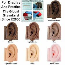 Body Piercing Practice Display Ear Ears 100% Made in USA Rafti