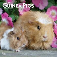 GUINEA PIGS - 2021 WALL CALENDAR - BRAND NEW - 20949