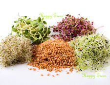 Sprouting seeds - Approx 7 000 seeds 20g - ENERGY MIX - Sprouts 7 species seeds