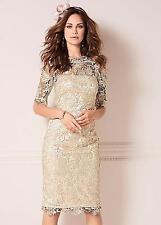 Kaleidoscope Champagne Lace Shift Dress Size 22 RE076 II 09