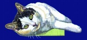 Embroidered Sweatshirt - Black & White Shorthair Cat BT2520  Sizes S - XXL