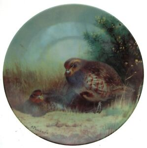 Our Magnificent Gamebirds Plate Partridges On A Summer Heath Archibald Thorburn