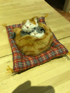 """Realistic cat and kitten on padded mat - 8"""" square"""
