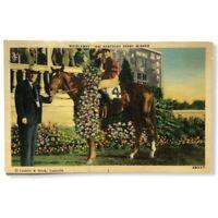 Vtg Whirlaway 1941 Kentucky Derby Winner Caufield Shook Unposted Linen Postcard