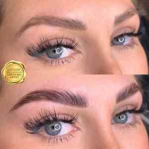 BROW LIFT BEVERLY HILLS LAMINATION ONLINE PDF COURSE - PROFESSIONAL COURSE