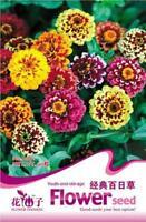Hot 1 Pack 50 Seeds Classic Zinnia Elegans Flower Seed Garden Flower WB