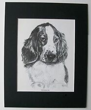 Welsh Springer Spaniel Dog Print Gladys Emerson Cook Pup Bookplate 1962 Matted