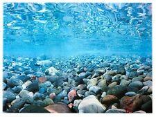 Rückwandfolie 80cm x 45 cm Rückwandposter für Aquarien (EUR 9,99 / 100 cm)