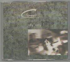 clannad -why worry ?   cd single