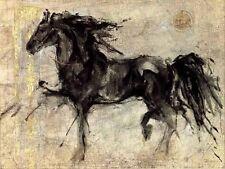 Lepa Zena by Marta Gottfried Animal Horse Black Stallion Print Poster 40x30