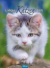 "Notizkalender ""Liebste Katzen"" 2019 Wandkalender als Tierkalender Küchenkalender"
