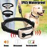 Collier anti-aboiement rechargeable pr chien, sans bruit et vibration