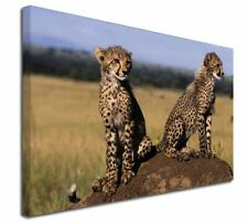 """Cheetahs on Watch 30""""x20"""" Wall Art Canvas, Extra Large Picture Prin, AT-25-C3020"""