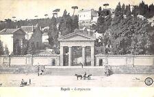 6245) NAPOLI, CAMPOSANTO, ANIMATA, CARRO E CAVALLO.