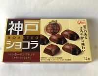 Glico, Van Houten Chocolate, 12 pc in 1 box, Japan Candy, S11