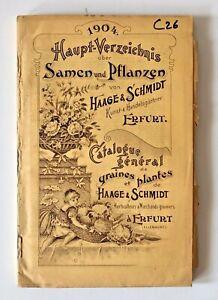 Catalogue La De Graines Et Plantes De Haage & Schmidt 1904