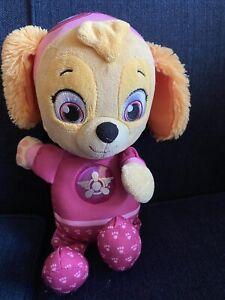 Paw Patrol SKYE light up (chest) & Musical Soft Toy Bear 💕