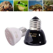 Reptile Supplies Ebay