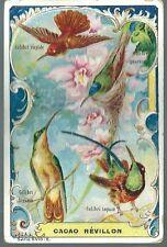 Chromo Chocolat Révillon série 5410 : 6 Colibri  oiseau bird