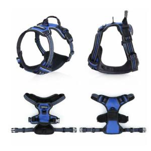 Rabbitgoo Non Pull Dog Harness Large Blue Adjustable Control Vest Reflective New