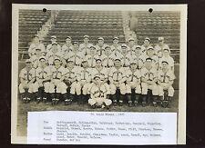 Original 1943 The Sporting News St. Louis Browns Baseball Team 8 X 10 Photo