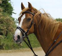 Shires Market Harborough Martingale Leather Pony Size BN Havana