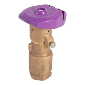 """Rain Bird 44NP 1"""" Non-Potable Sprinkler Quick Coupling Valve"""