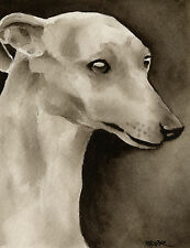 Whippet Art Print Sepia Watercolor Painting by Artist Djr