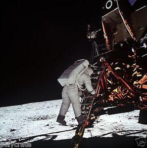 Photo Nasa - Apollo 11 - Buzz Aldrin descend du module lunaire