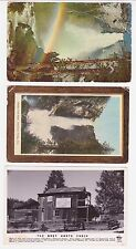 Antique Post Card Lot of 3 Yosemite  Cal. 1 Real Photo Post Card RPPC