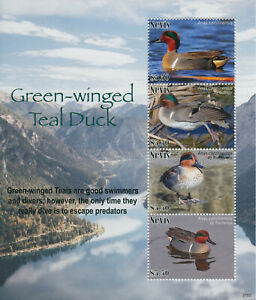 Nevis 2021 MNH Birds on Stamps Green-Winged Teal Ducks Teals 4v M/S