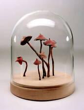 Roxy Paine, Untitled (7 Small Mushrooms), 2006 (Sculpture)