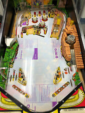 Playfield Protector Indiana Jones IJTPA WMS with extras and protectors