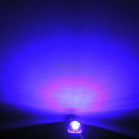 1000pc 5mm LED Straw hat Lamp White Warm Red Green Blue Amber Purple Wide Angle