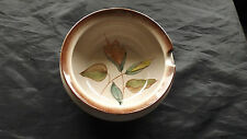 Unboxed Denby Earthenware Pottery Bowls