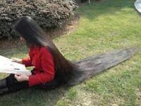 AMLA-REETHA-SIKAKAI + 11 OILS Hair Growth Oil Faster Hair Growth Grow Long Hair