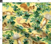 Squirrels Watercolor Squirrel Animal Autumn Spoonflower Fabric by the Yard