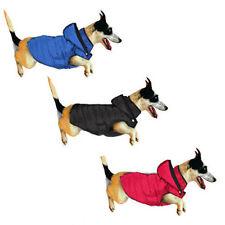 Ropa y calzado abrigo para perros