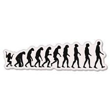 "Evolution Darwin Monkey Apes car bumper sticker decal 8"" x 3"""