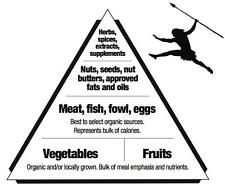 Paleo Food Pyramid Healthy Eating Meal and Diet Plan 12 x 18 Poster