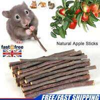 Wood Chew Sticks Twigs for Small Pets Rabbit Hamster Guinea Pig Parrot Toy