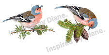 Furniture & Wall Sticker /Clear Sticker /Cut & Stick /2 Birds Bird Vintage 889