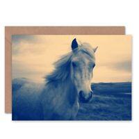 Birthday Animal Photo Painting White Horse Blank Greeting Card With Envelope