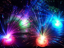Fibre Optic LED Night Light Lamp Party Home Room Wedding Christmas Decoration