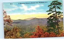 Walhalla South Carolina SC Mountains Autumn Oconee County Vintage Postcard B46