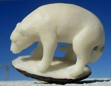 Bär , geschnitzt aus einer Tagua - Nuss !